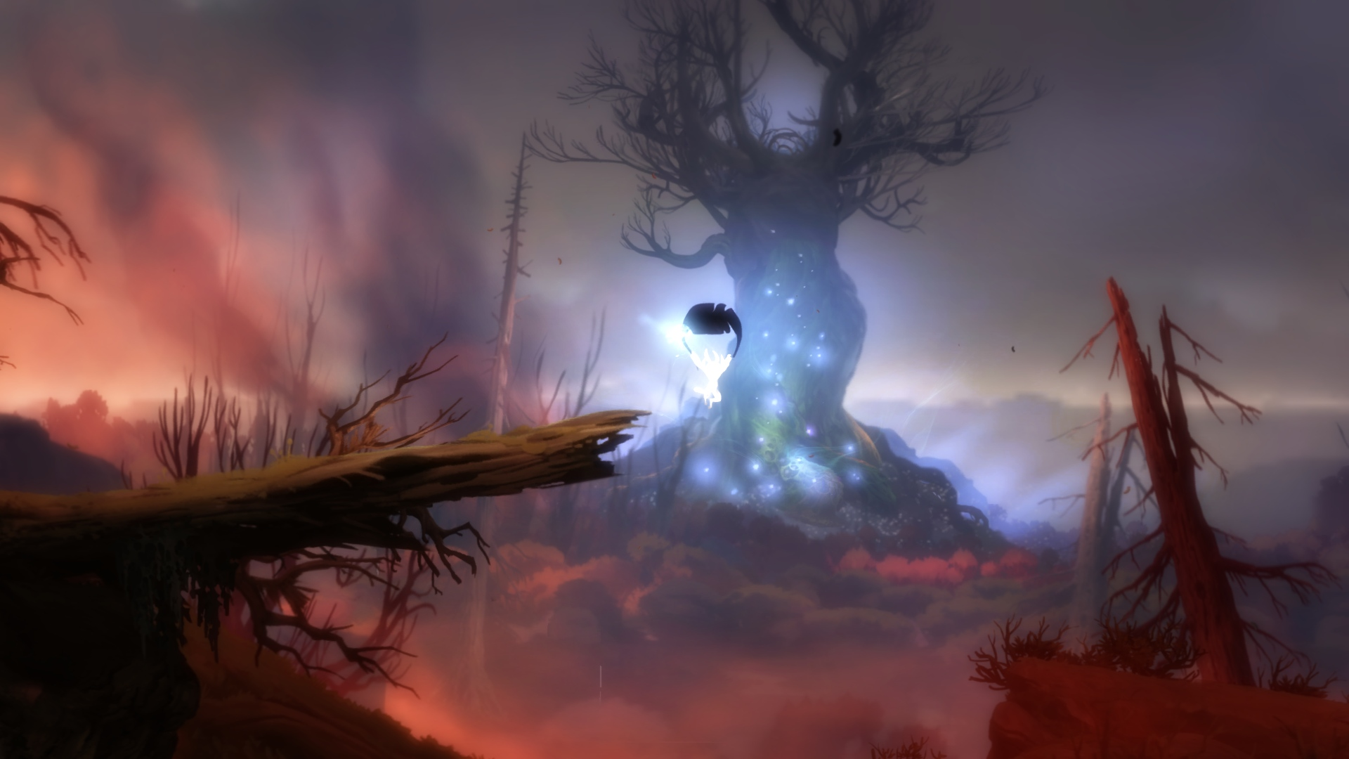 Ori and the Blind Forest (9)