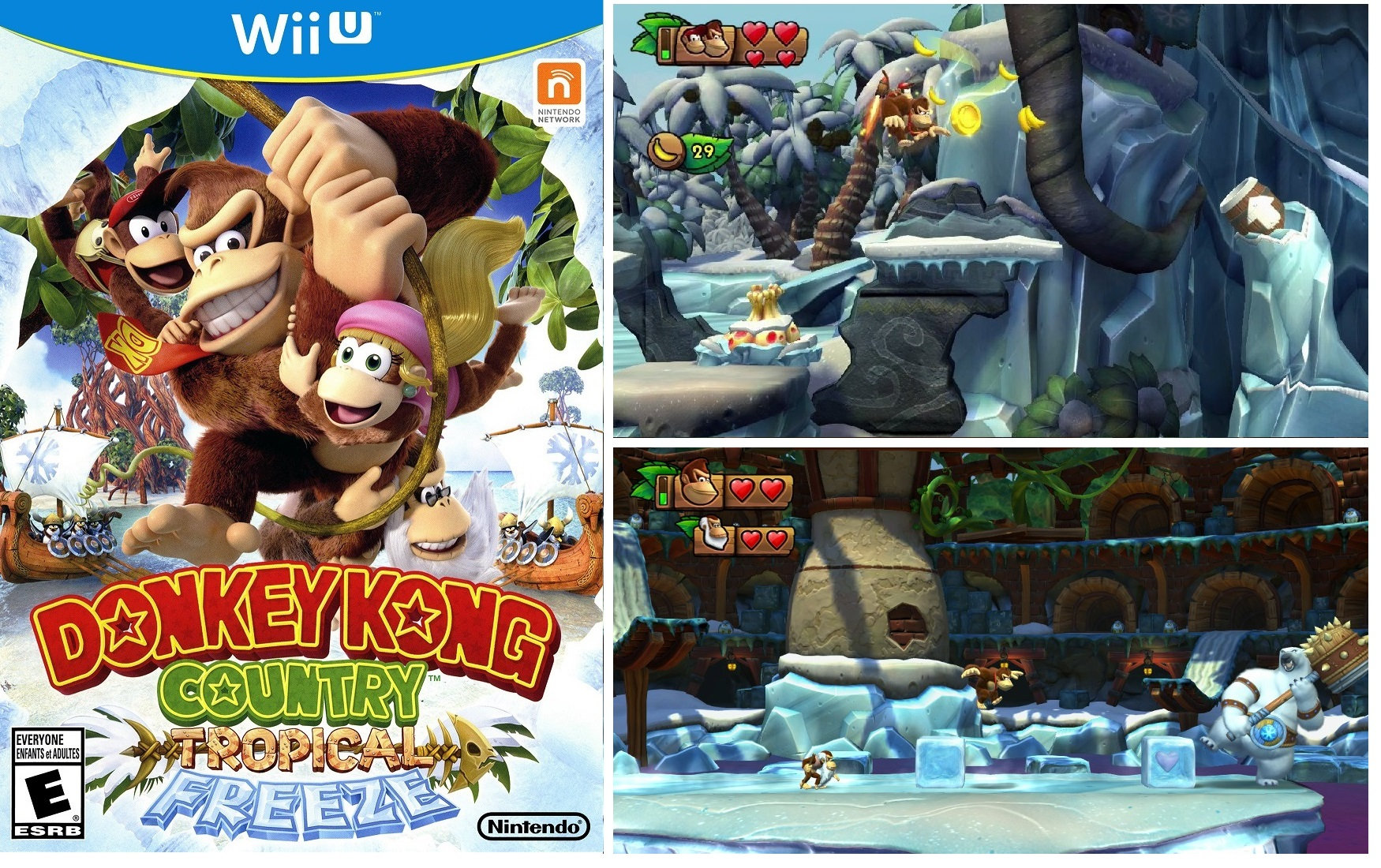 Donkey Kong Country Tropical Freeze (2)
